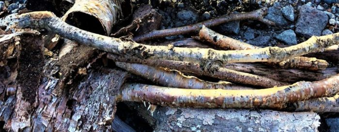 集めた焚き木