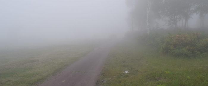 ほたか牧場キャンプ場の霧