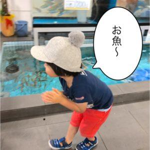 魚にはしゃぐ子ども。