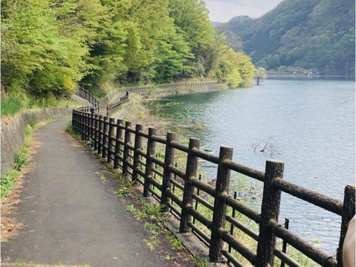赤谷湖の遊歩道