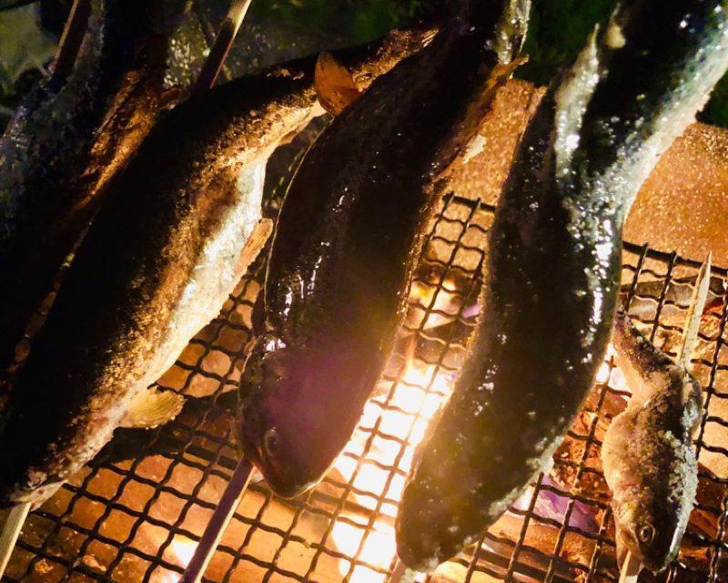 釣った魚を焼く