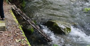 黒坂石バンガローテント村の川