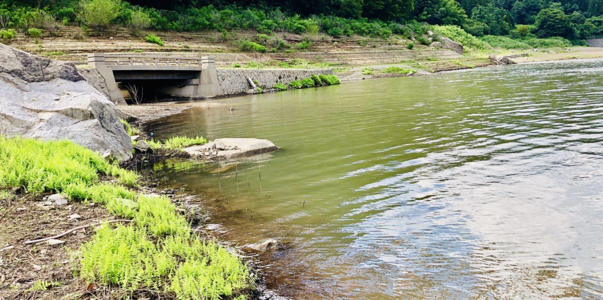草木ダムで釣り