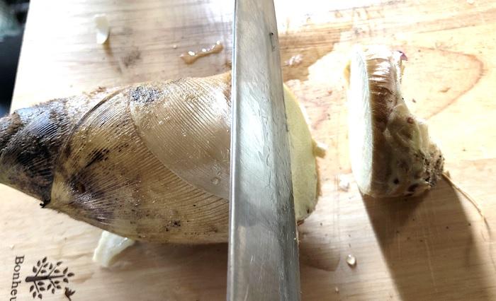 タケノコの根を切る
