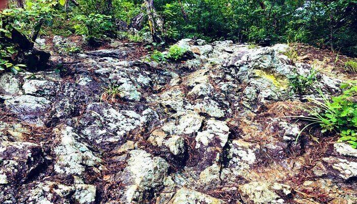 戸神山の岩場
